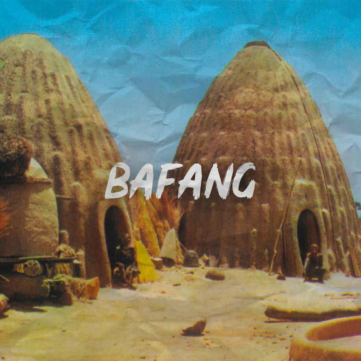 Mounaye-cases-bafang