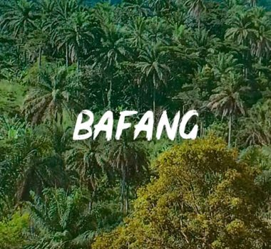 mounaye-jungle-bafang